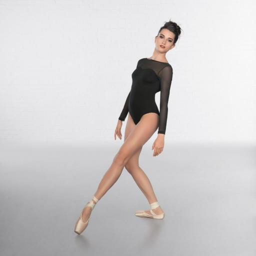 Sweetheart neck mesh long sleeve leotard