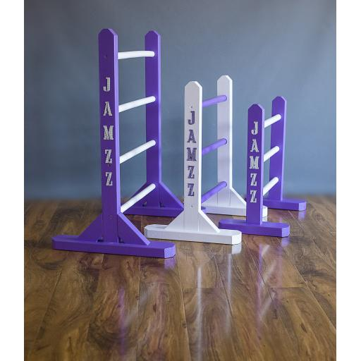all-ladders-low-res.jpg